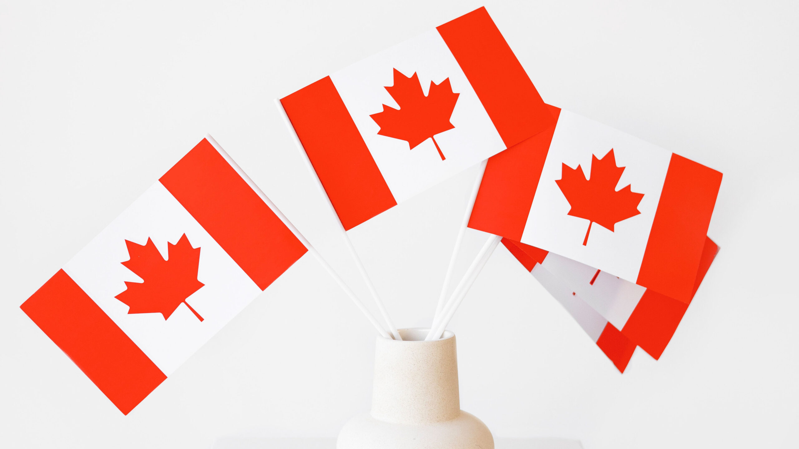 Small Canada flags in vase.