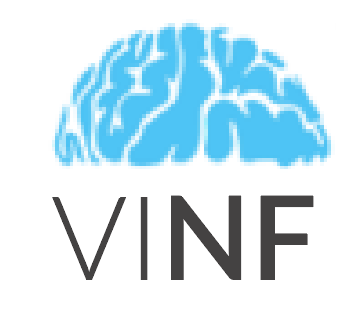 Vancouver Island Neurosurgical Foundation logo